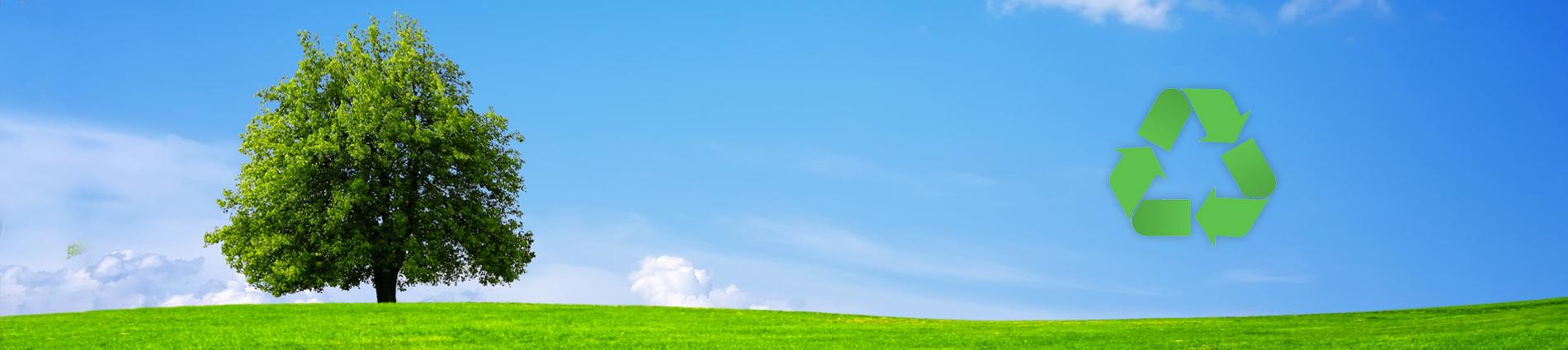 Consulenza Ambientale per Aziende ed Enti Locali | Smaltimento Rifiuti Speciali